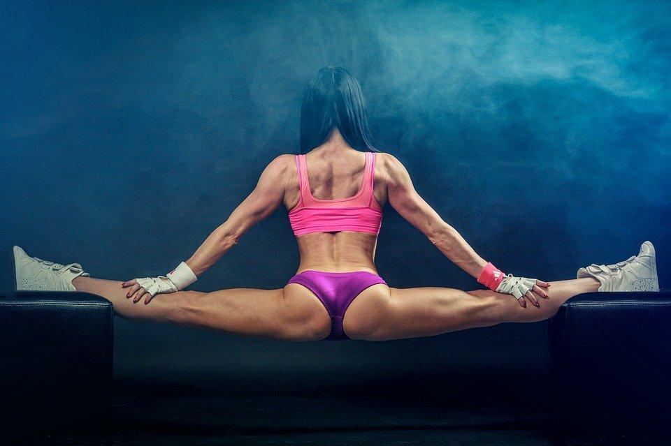 3 elementos claves en un plan de entrenamiento fitness eficaz